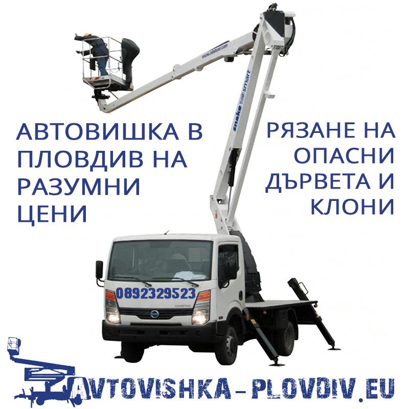 Автовишка в Пловдив на ниски цени - Рязане на опасни дървета